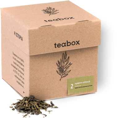 THE GREEN SQUARE GREEN TEA